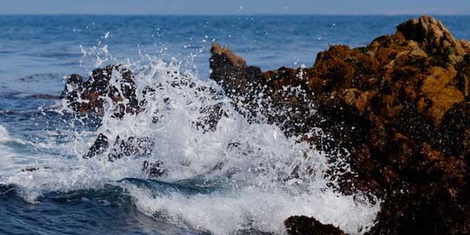 mar olas